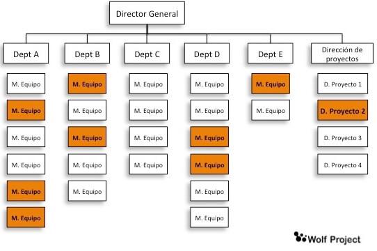estructuras empresa pmi matricial