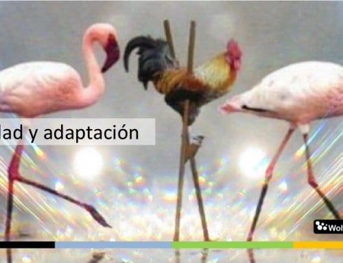 Usa Scrum y asegura el éxito: adaptarse es obligatorio en los proyectos
